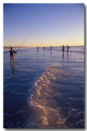(DY-041) Beach fishing