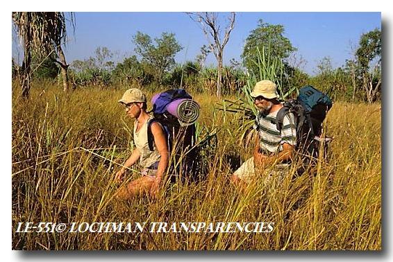 (LE-551) Bushwalking – Kimberley