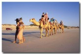 camel-rides-on-cable-beach-bn-746-copy