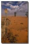dust-storm-al-675-copy