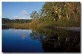 fraser-island-lake-mackenzie-tc-423-copy