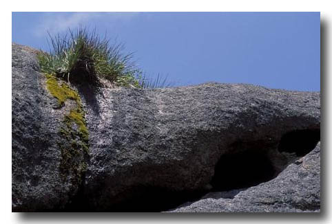 (MZ-193) Geology – Minerals – GRANITE