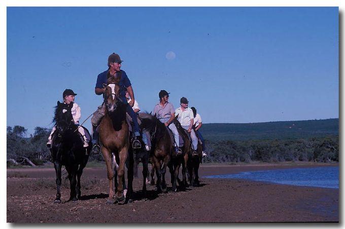 (PP-360) Horseriding
