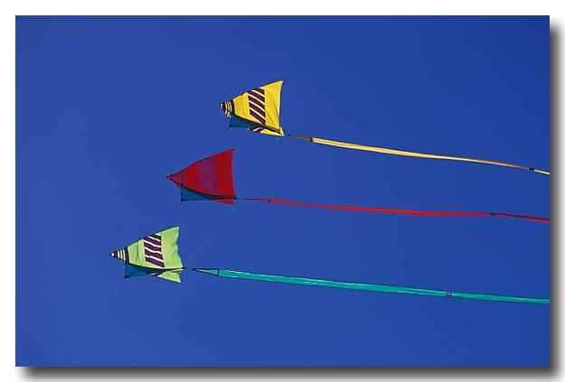 (LG-316) Kites