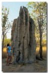 magnetic-termite-mounds-xb-471-copy