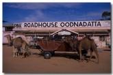 oodnadatta-track-oa-078-copy