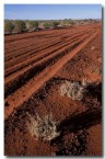 outback-red-road-da-838-copy
