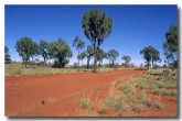 outback-road-da-841-copy