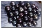 pearl-cm-047-copy