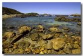 south-coast-mimosa-np-mimosa-rocks-am-342