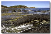 south-coast-mimosa-rocks-np-am-356