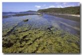 south-coast-murramarang-np-pebbly-beach-am-191