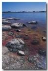 stromatolites-lake-thetis-fx-502-copy
