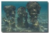 stromatolites-rr-832-copy