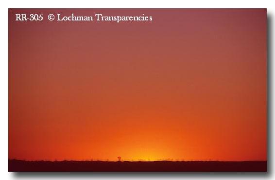(RR-305) Sunset – Great Sandy Desert