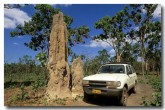 termite-mounds-xb-470-copy