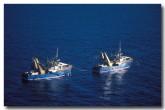 trawler-yy-473-copy