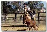 horses-ev-072-copy