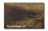 Helena-Aurora Range AW-069 © Marie Lochman LT