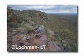 Helena Aurora Range - Great Western Woodlands LLM-616 ©Jiri Lochman- Lochman LT