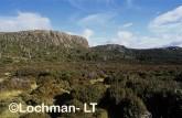Walls of Jerusalem - mountain heath ABY-599 ©Marie Lochman- Lochman LT