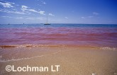 Coral spawning at Ningaloo Reef - Water and beaches coloured by