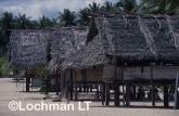 PNG- Madang Province VSY-525 ©Alex Steffe - Lochman LT