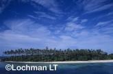 PNG- Milne Bay Province -Trobriand Islands VSY-027 ©Alex Steffe - Lochman LT