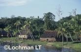 PNG- Sepik River village VSY-562 ©Alex Steffe - Lochman LT