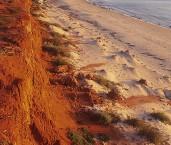 Shark Bay World Heritage Area  - Cape Peron