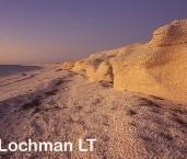 Shark Bay World Heritage Area  - Shell Beach