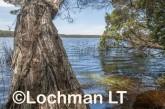 D'Entrecasteaux NP - Lake Maringup AGD-586 ©Marie Lochman LT