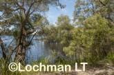 D'Entrecasteaux NP - Lake Maringup AGD-587 ©Marie Lochman LT