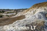 Buckley's Breakaway Nature Reserve AGD-568 ©Marie Lochman LT