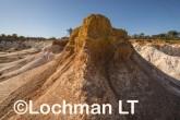 Buckley's Breakaway Nature Reserve AGD-569 ©Marie Lochman LT