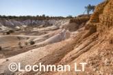 Buckley's Breakaway Nature Reserve AGD-570 ©Marie Lochman LT