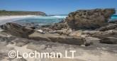 Fitzgerald River NP - West Beach AGD-738 ©Marie Lochman - Lochman LT
