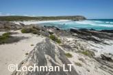 Fitzgerald River NP - West Beach AGD-742 ©Marie Lochman - Lochman LT