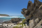 Fitzgerald River NP - West Beach AGD-743 ©Marie Lochman - Lochman LT