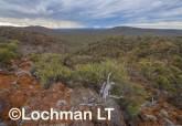 Helena-Aurora Range AGD-749 ©Marie Lochman - Lochman LT