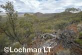 Helena-Aurora Range AGD-751 ©Marie Lochman - Lochman LT