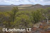 Helena-Aurora Range AGD-752 ©Marie Lochman - Lochman LT