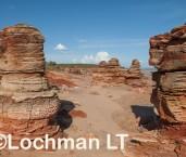 Roebuck Bay AGD-904 ©Marie Lochman - Lochman LT