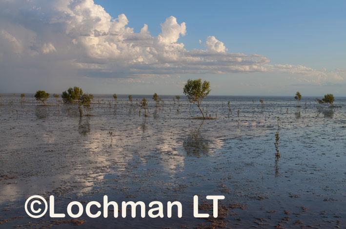 Broome – Roebuck Bay