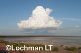 Roebuck Bay at the Bird Observatory LLK-279 © Jiri Lochman Transparencies