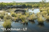 Mitchell Plateau  ACD-103 © Marie Lochman LT