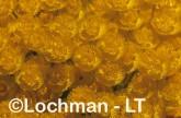 Verticordia nitens Orange Morisson ZAY-850 ©Jiri Lochman - Lochman LT