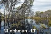 Lake Cronin  AED-073  ©Marie LochmanLT