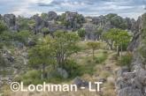 Kimberley - Oscar Range - Devonian Reef  AGD-940 ©Marie Lochman - Lochman LT