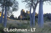 Oscar Range ANY-247 ©Marie Lochman - Lochman LT